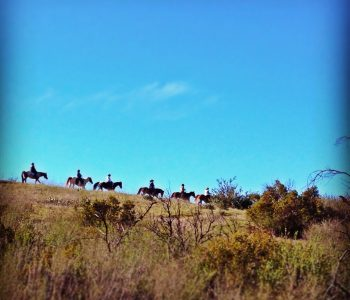 safe trail riding tips