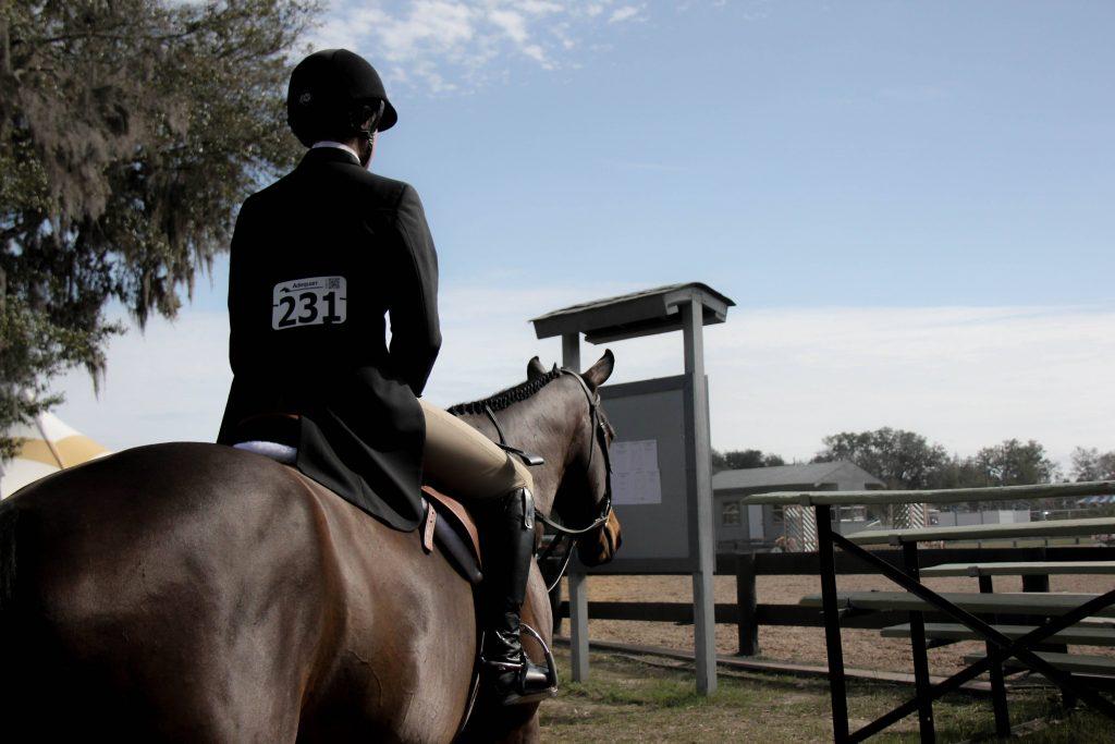 Developing Dressage Horse Strength Euroxciser