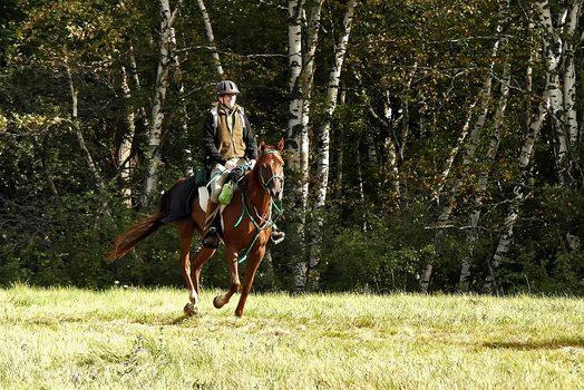 Endurance Rider