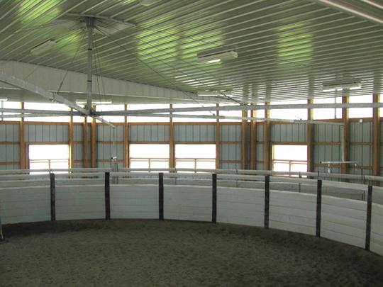 ceiling mounted horse walker