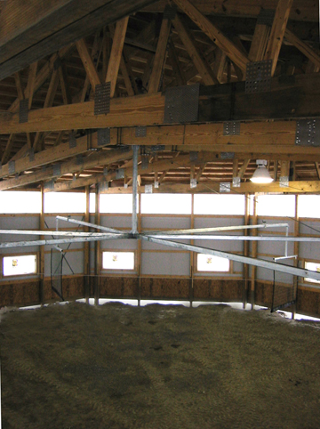 Ceiling Horse Exerciser