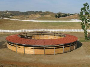 Horse-Exerciser-Track-Cover1