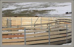 Model 2 panel fence